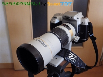 resize_IMGP1084.JPG